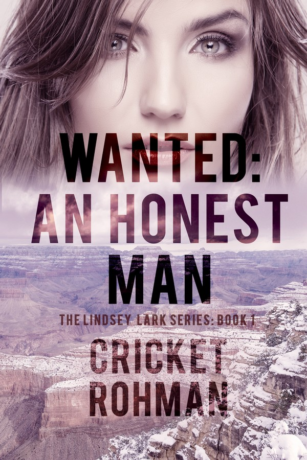 Wanted: An Honest Man